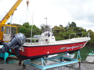 BAY FISHER-23 オプション写真